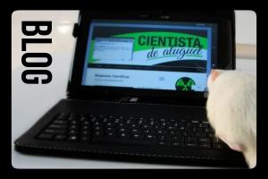 blog_texto