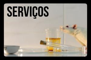 servicos_texto